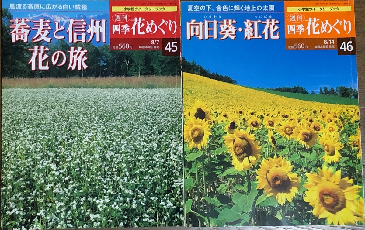 f:id:hideki-sansho:20200609214859j:plain