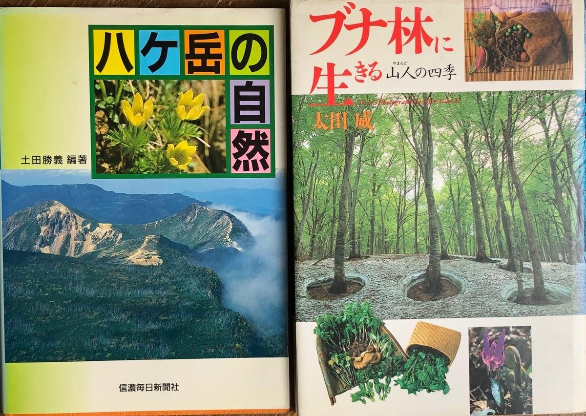 f:id:hideki-sansho:20200615132821j:plain
