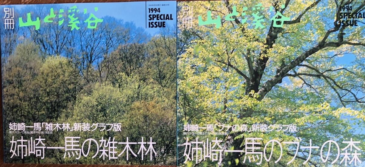 f:id:hideki-sansho:20200615133923j:plain