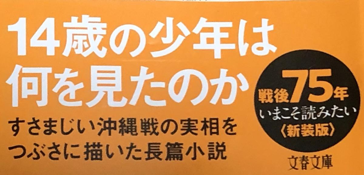 f:id:hideki-sansho:20200829211046j:plain