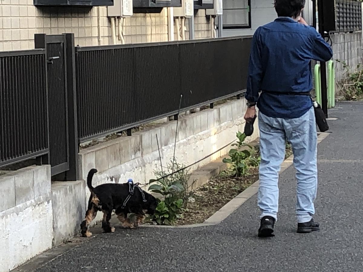 f:id:hideki-sansho:20201015135008j:plain