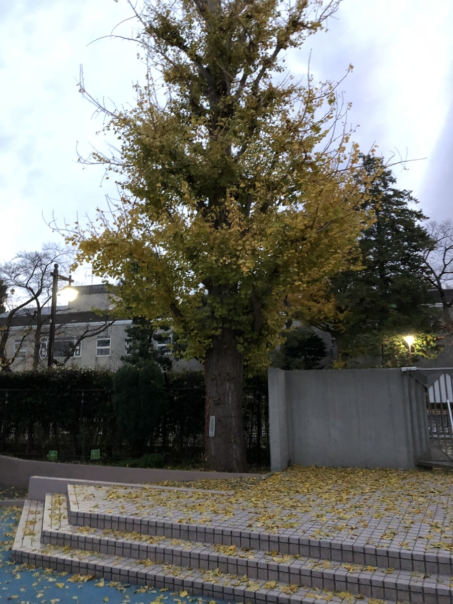 f:id:hideki-sansho:20201215135118j:plain
