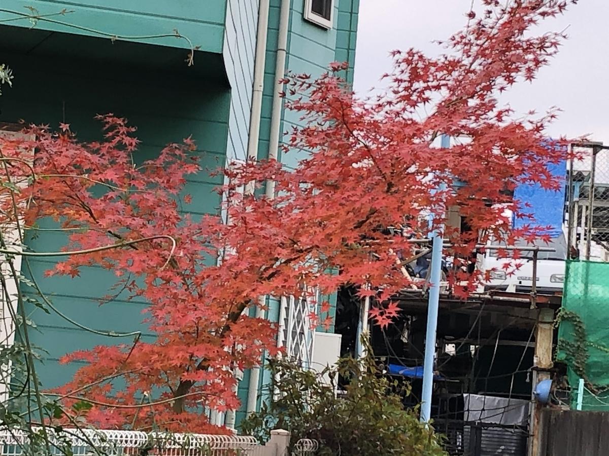 f:id:hideki-sansho:20201219162559j:plain