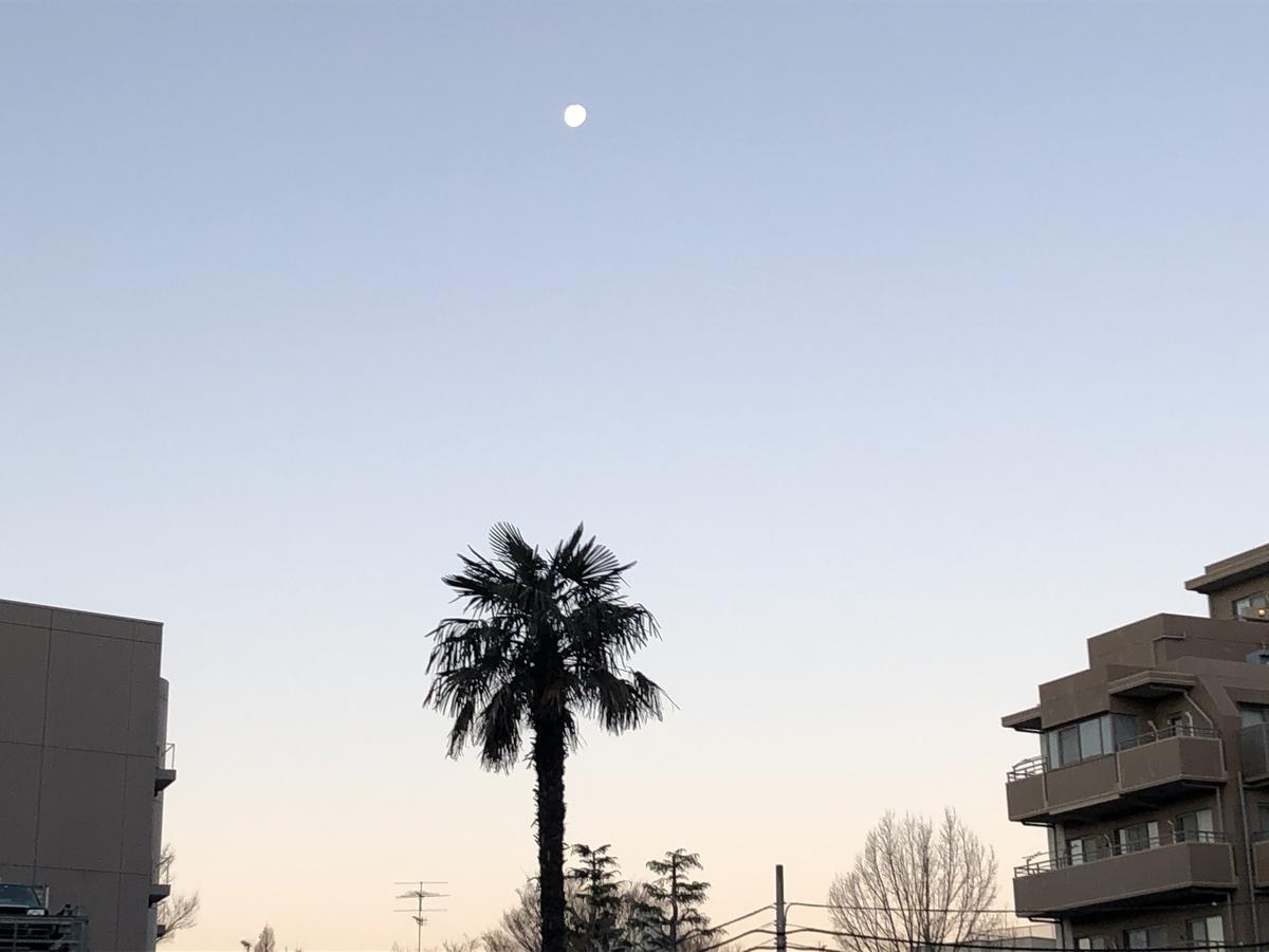 f:id:hideki-sansho:20210104083555j:plain
