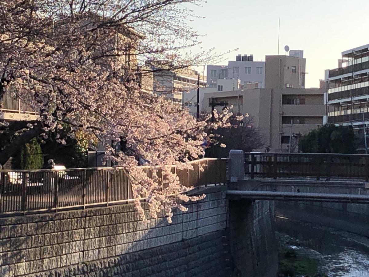 f:id:hideki-sansho:20210323101416j:plain