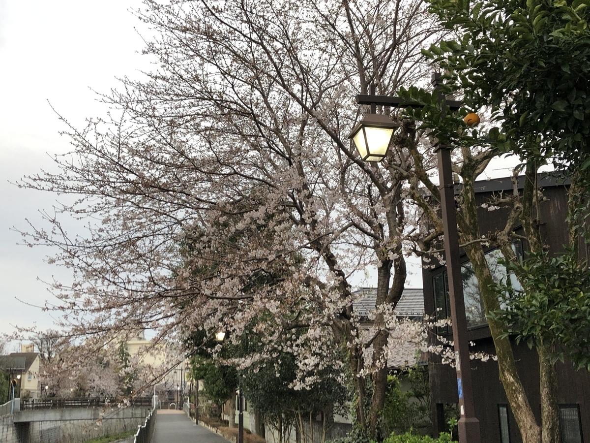 f:id:hideki-sansho:20210325095546j:plain