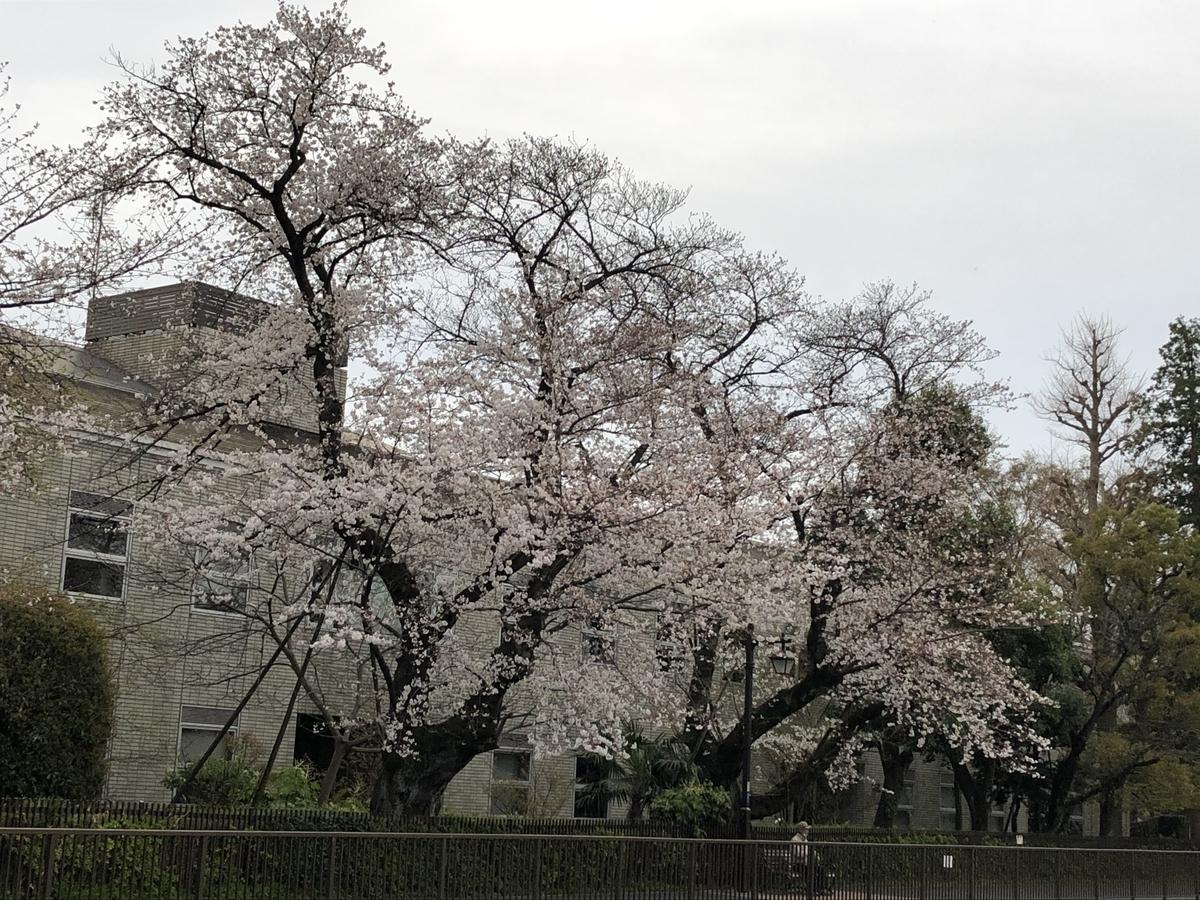 f:id:hideki-sansho:20210325095614j:plain