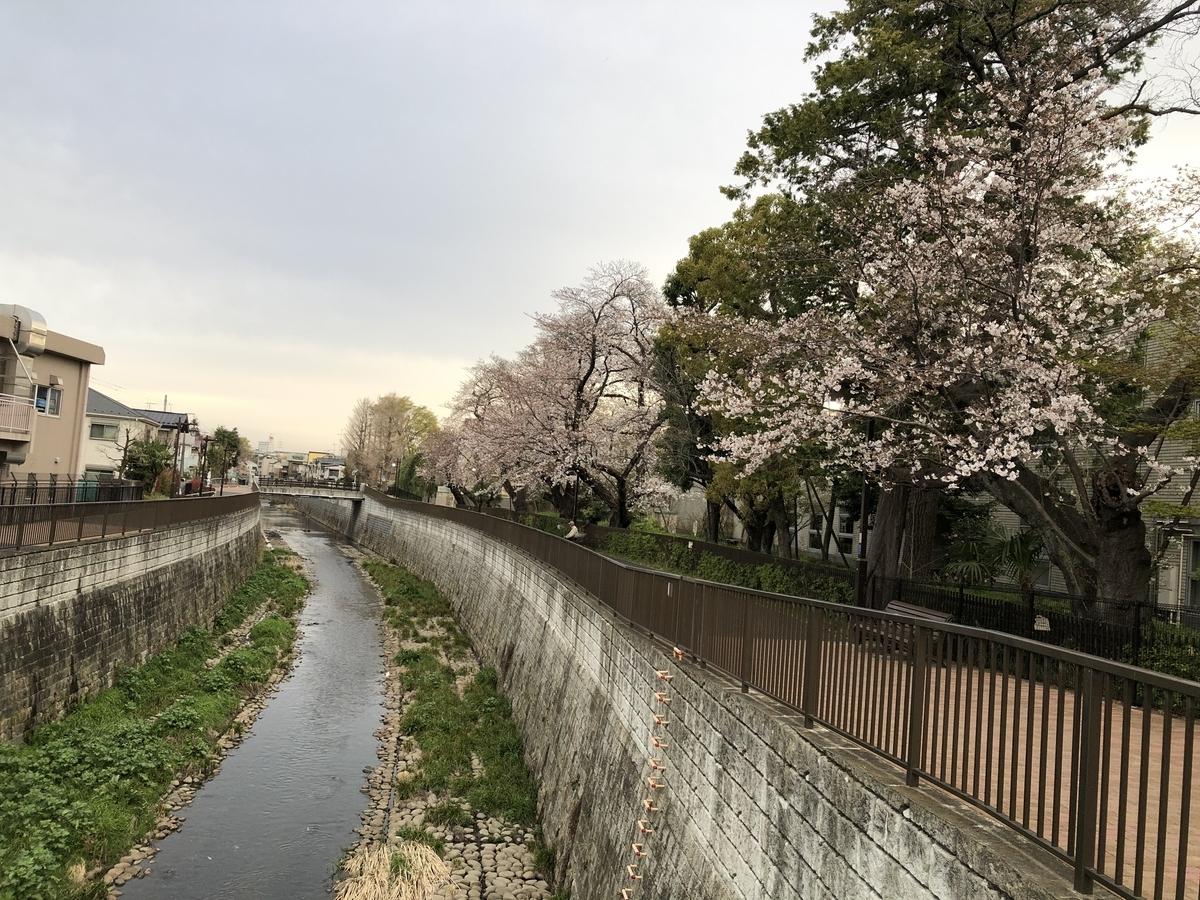f:id:hideki-sansho:20210325095719j:plain