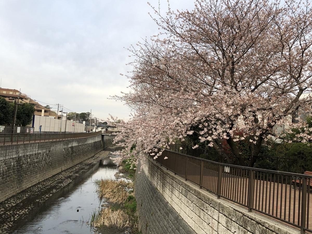 f:id:hideki-sansho:20210325095814j:plain