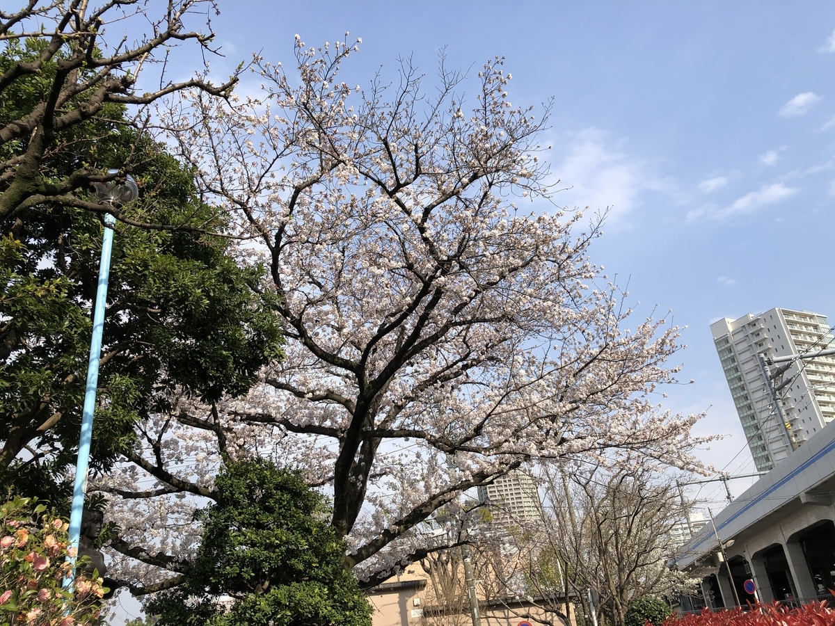 f:id:hideki-sansho:20210326194957j:plain