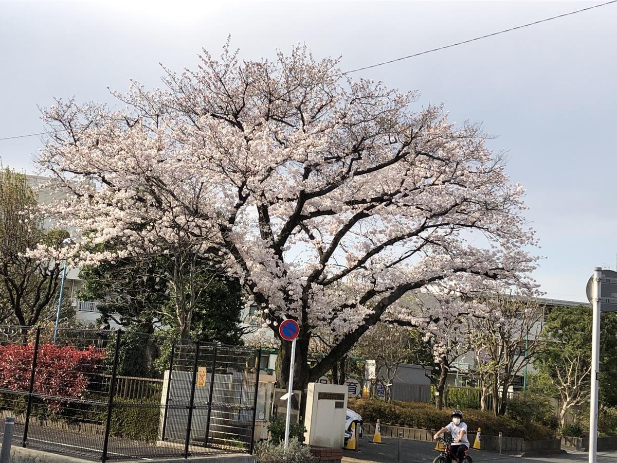 f:id:hideki-sansho:20210326195013j:plain