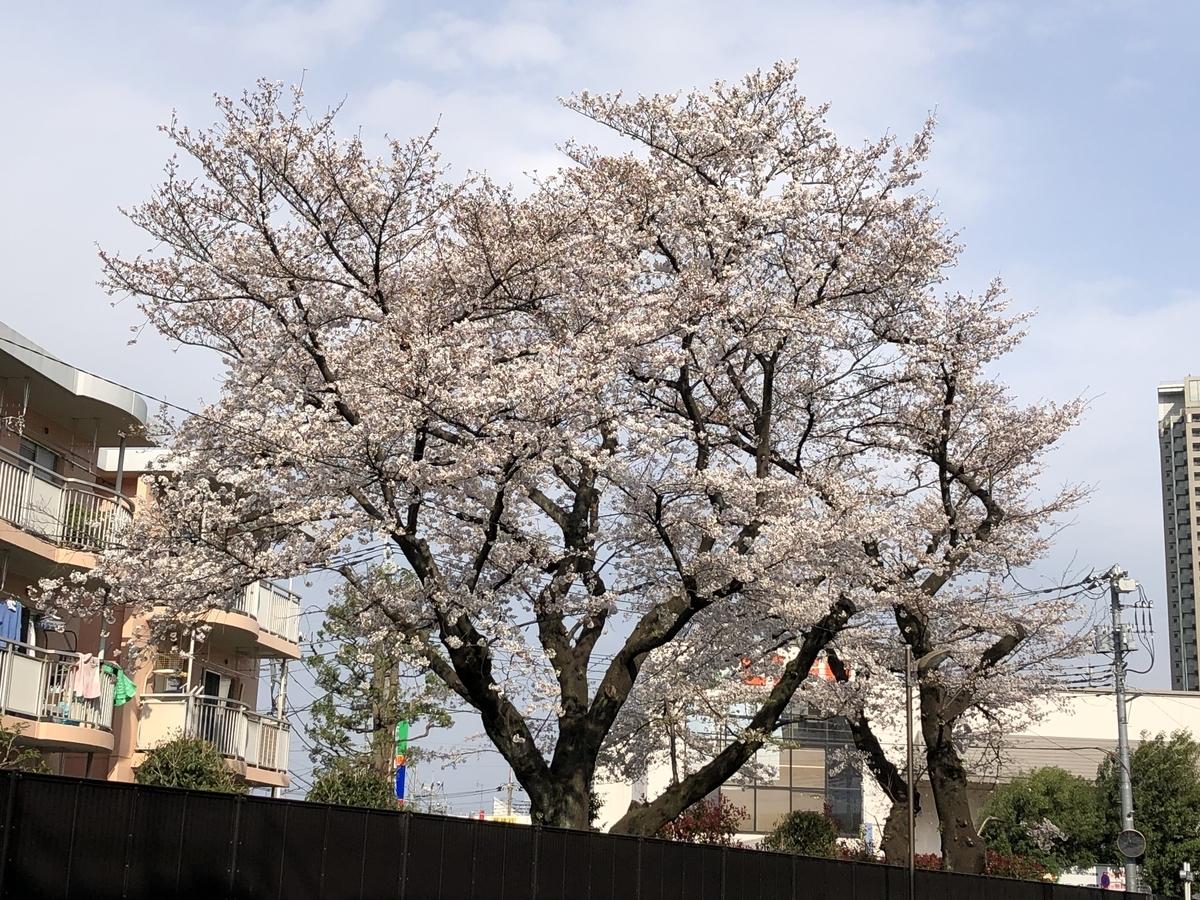 f:id:hideki-sansho:20210326195042j:plain