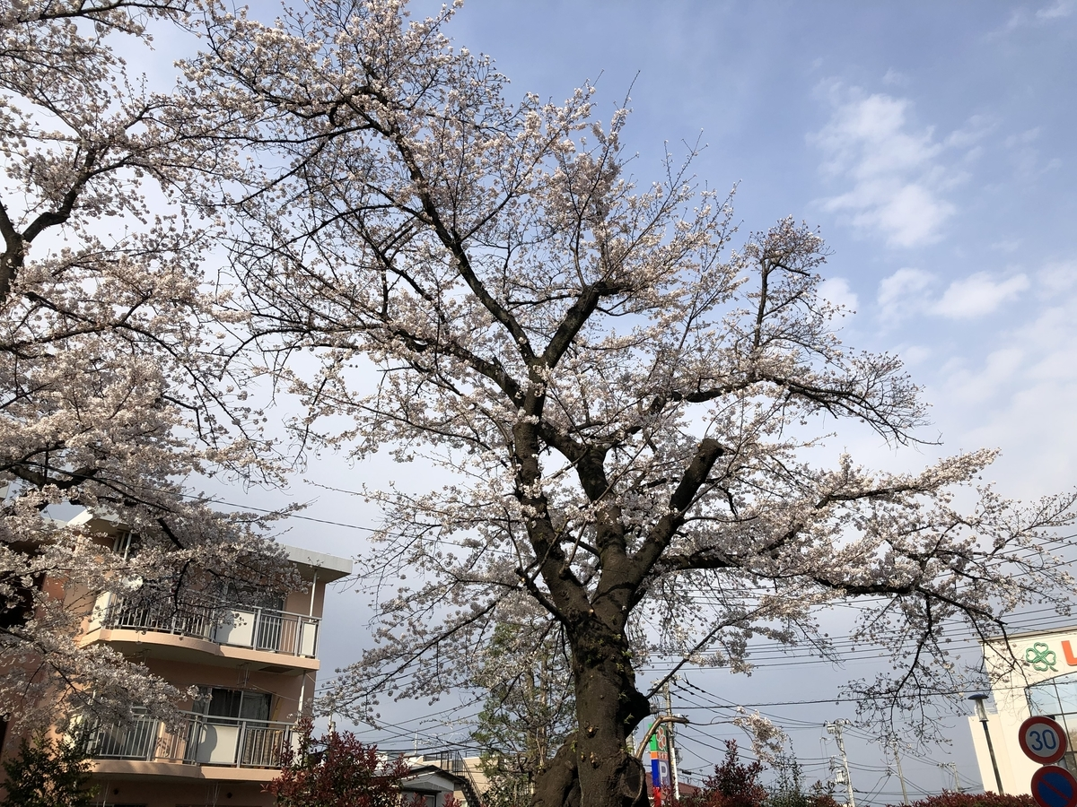 f:id:hideki-sansho:20210326195059j:plain