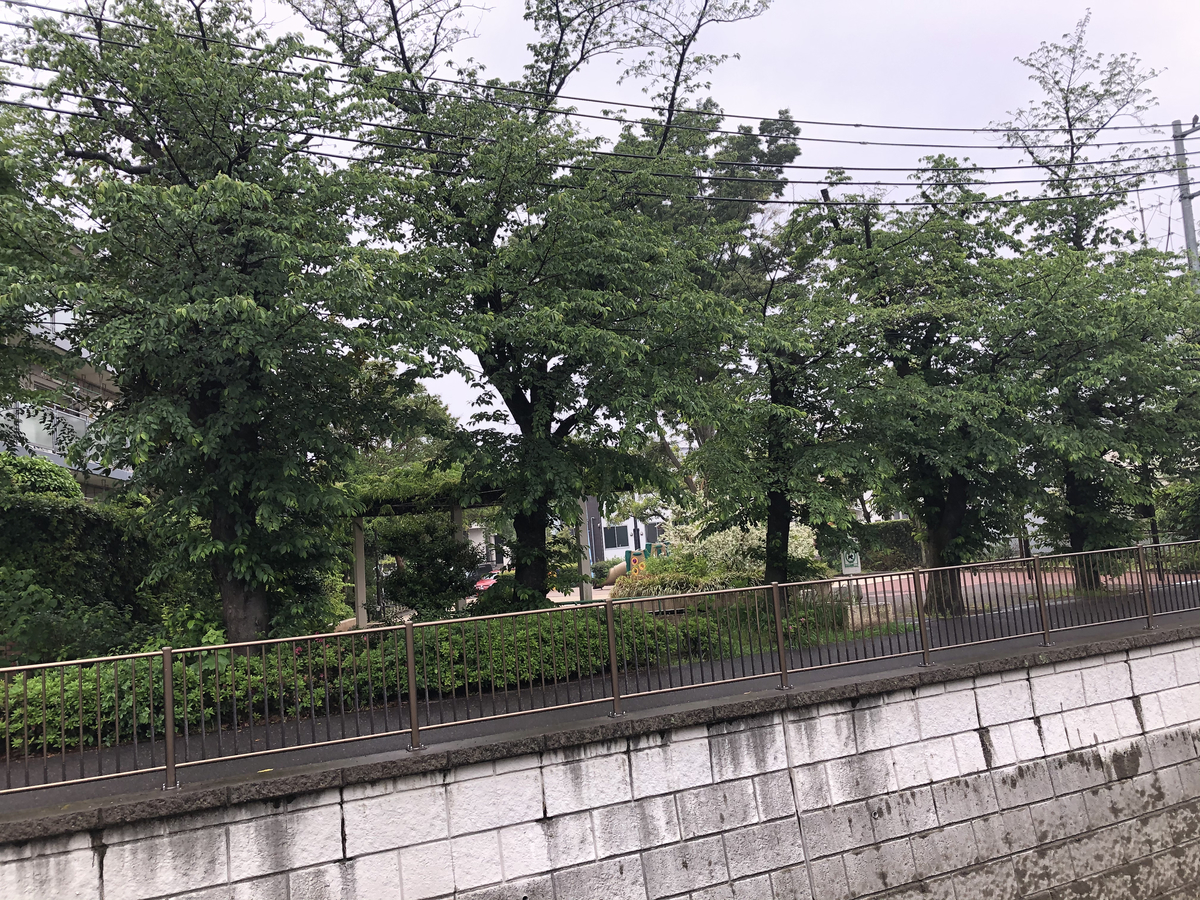 f:id:hideki-sansho:20210506164249j:plain