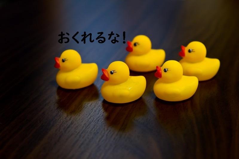 f:id:hiderino-akihito:20180930140255j:plain