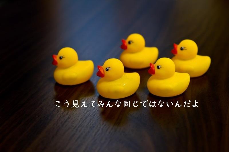 f:id:hiderino-akihito:20181008214145j:plain