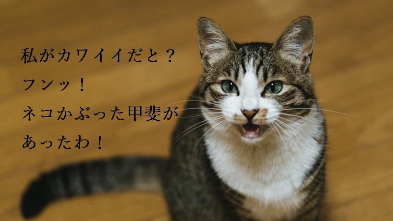 f:id:hiderino-akihito:20190119233730j:plain