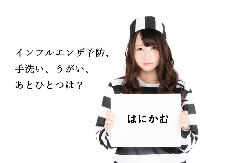 f:id:hiderino-akihito:20190127133523j:plain