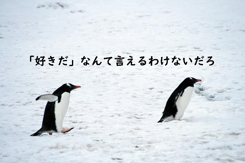 f:id:hiderino-akihito:20190207212342j:plain