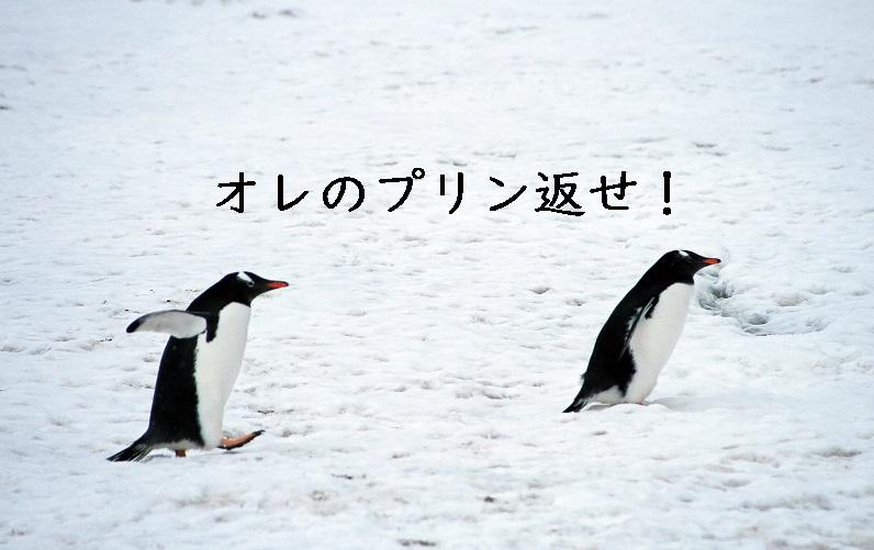 f:id:hiderino-akihito:20190313221751j:plain