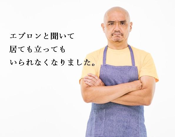 f:id:hiderino-akihito:20190516221026j:plain