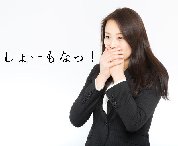 f:id:hiderino-akihito:20190708220510j:plain