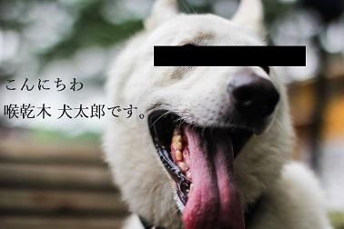 f:id:hiderino-akihito:20200417204633j:plain