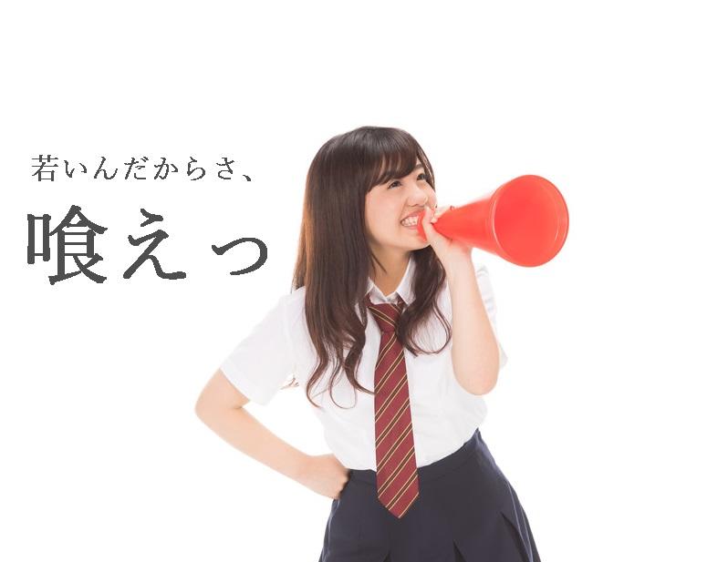 f:id:hiderino-akihito:20201101202345j:plain