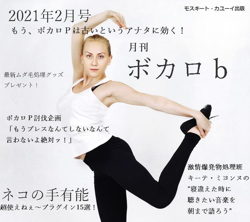 f:id:hiderino-akihito:20210120221536j:plain