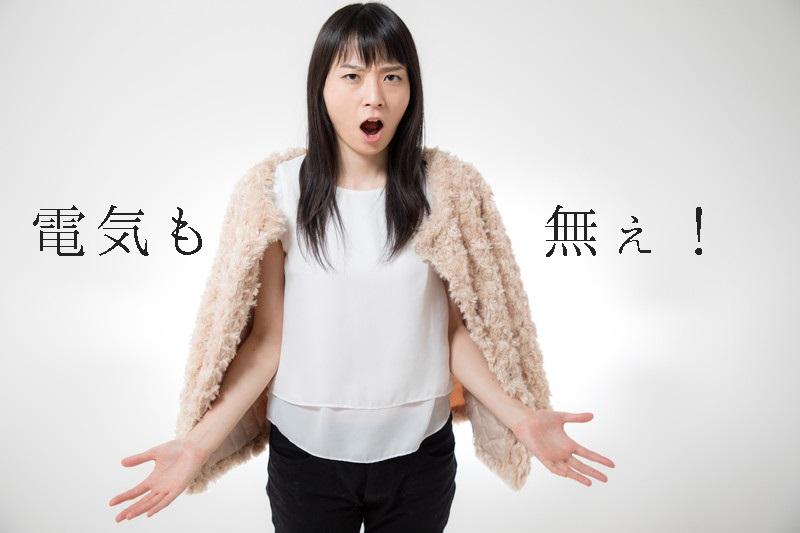 f:id:hiderino-akihito:20210312224531j:plain