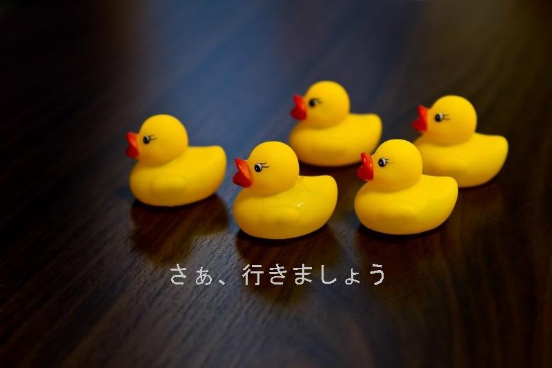 f:id:hiderino-akihito:20210331203040j:plain
