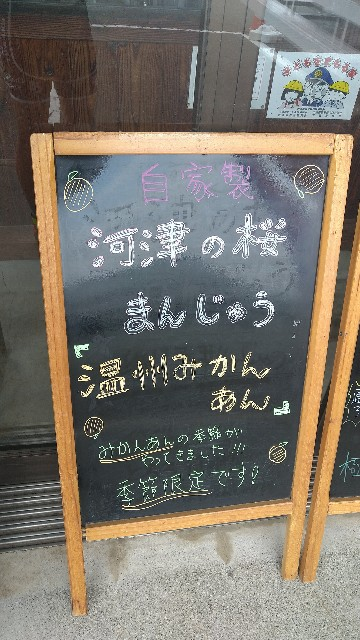 f:id:hidetorashogun:20210913073518j:image