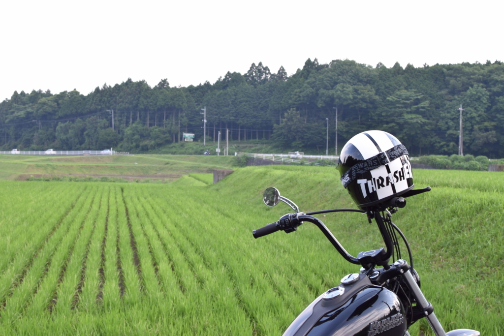 f:id:hideyoshi-motolife:20171111153905j:plain