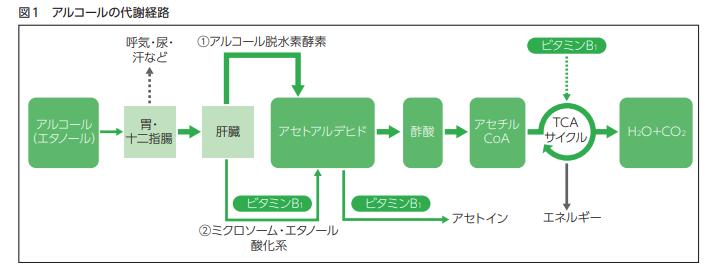 f:id:hideyoshi1537:20190701073326p:plain