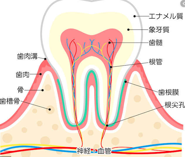 f:id:hideyoshi1537:20191003225740p:plain