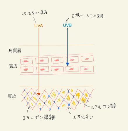 f:id:hideyoshi1537:20200202193054p:plain