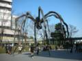 六本木的大蜘蛛