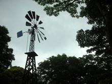 唯一重建的風車
