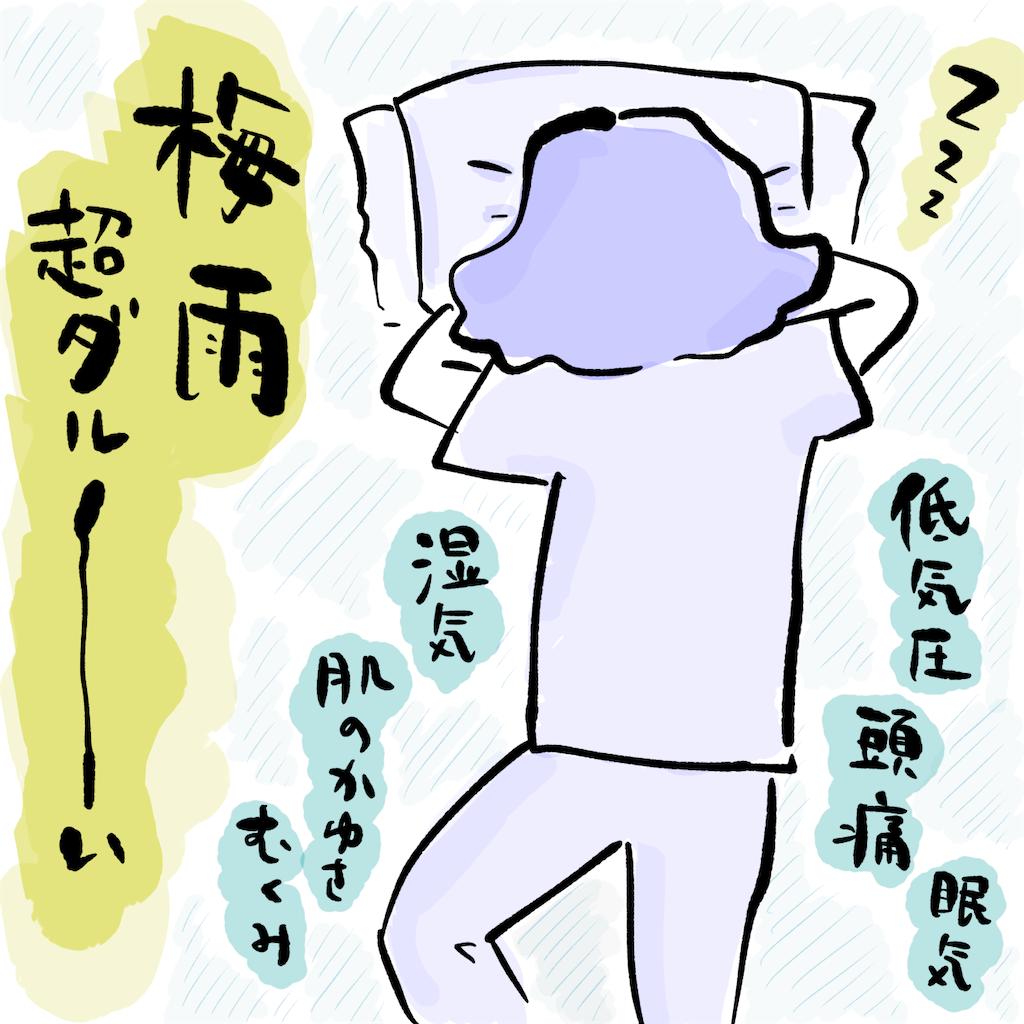 f:id:higa_meko:20210628204956p:image