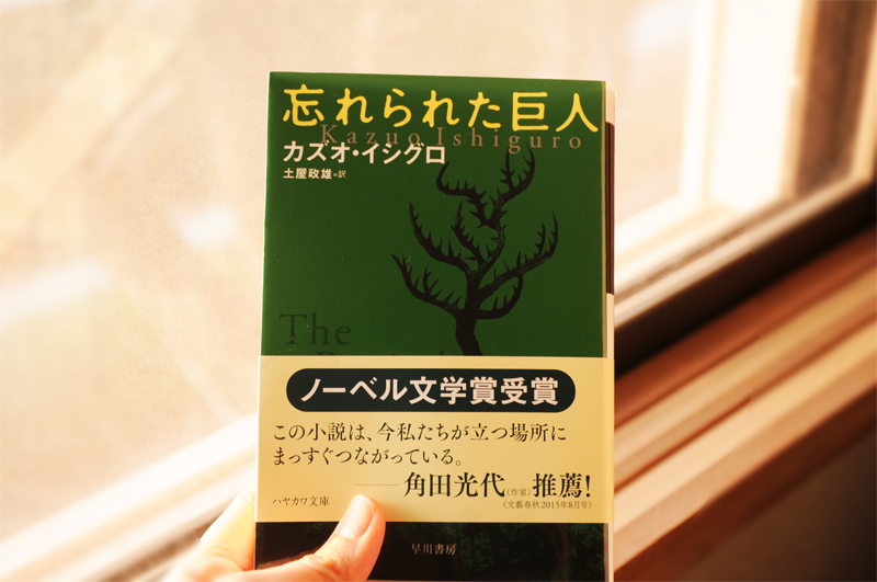 f:id:higanoaoi:20180120203543j:plain