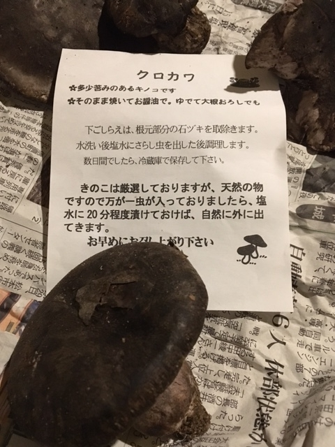 f:id:higanzakura109:20171013224234j:plain