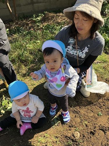 f:id:higashi-hiyoko:20171117153409j:plain