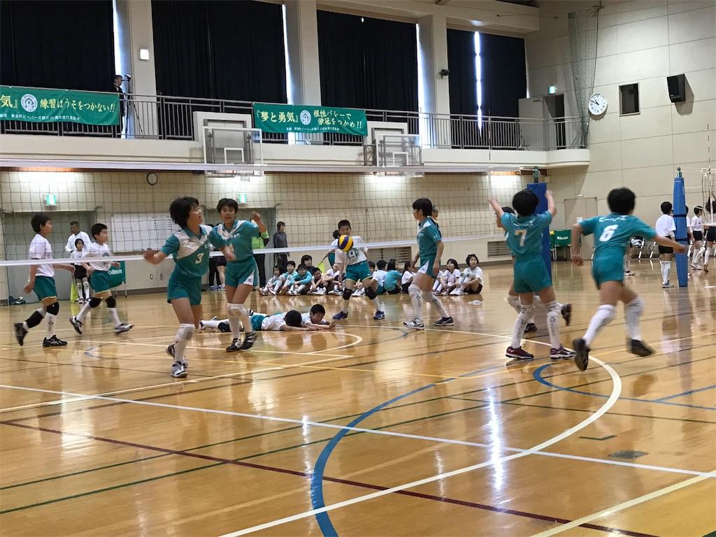f:id:higashikanamachi_beavers:20170320185129j:image