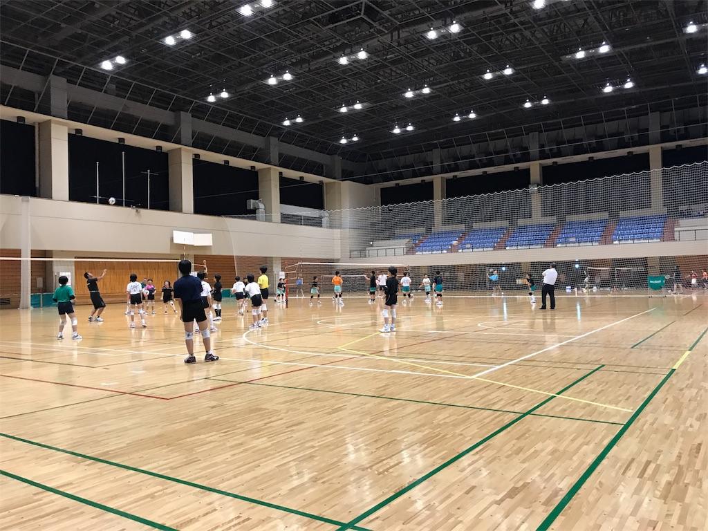f:id:higashikanamachi_beavers:20170623214129j:image