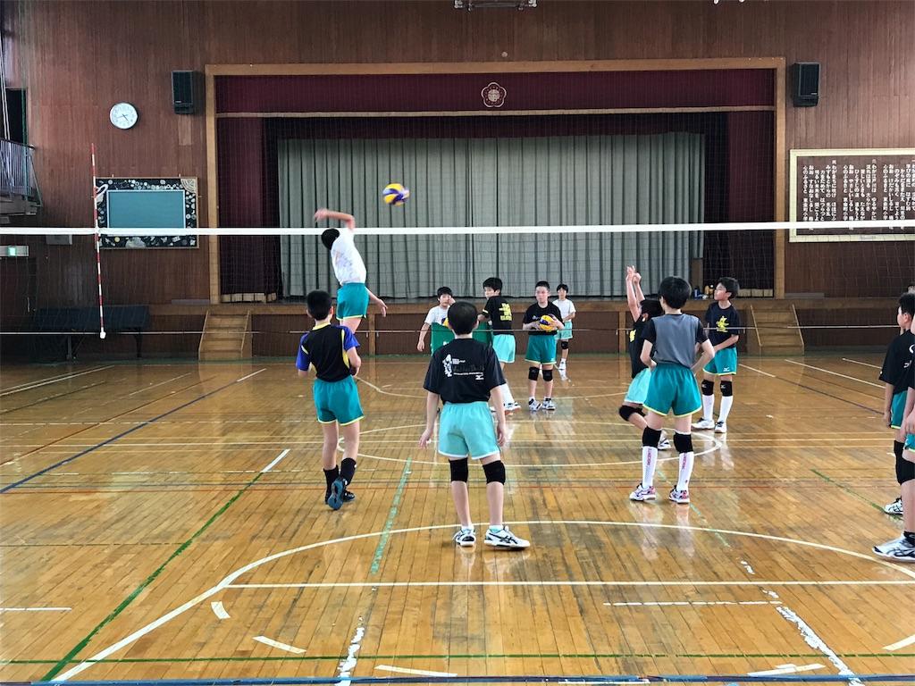 f:id:higashikanamachi_beavers:20170806180515j:image