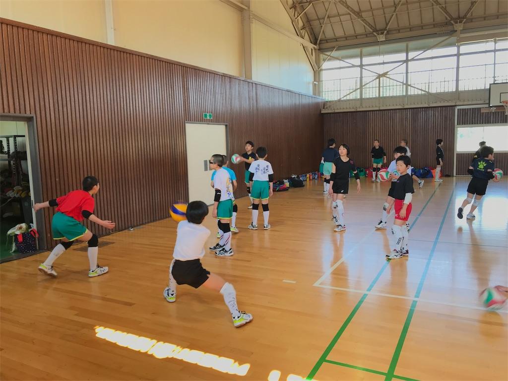 f:id:higashikanamachi_beavers:20180325133045j:image