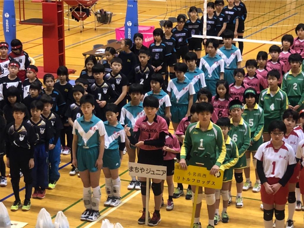 f:id:higashikanamachi_beavers:20190317201345j:image