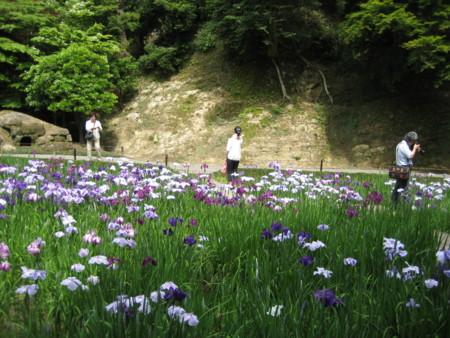 f:id:higashinaoko:20120604133202j:image