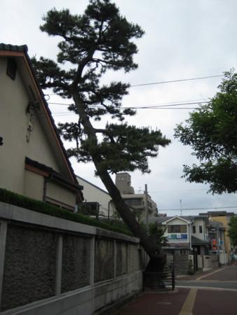 f:id:higashinaoko:20120608133918j:image