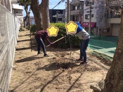 土作り 花壇